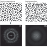 """""""Engineered disorder in photonics"""" is Published in Nature Reviews Materials"""